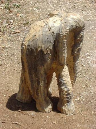 olifant
